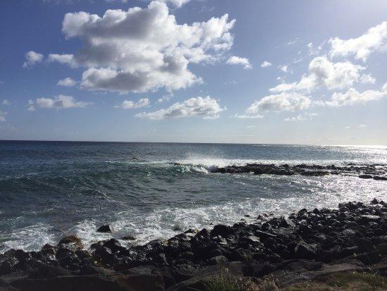 Nukumoi Surf Co.: photo1.jpg