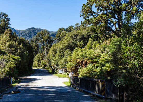 Westland National Park (Te Wahipounamu), New Zealand: Highway 6 turnoff to Salmon Farm