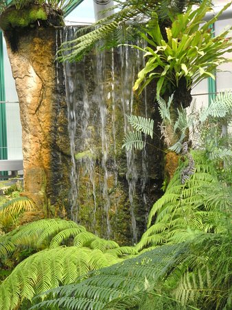 Liberec Botanical Garden (Czech Republic): Why go? - TripAdvisor