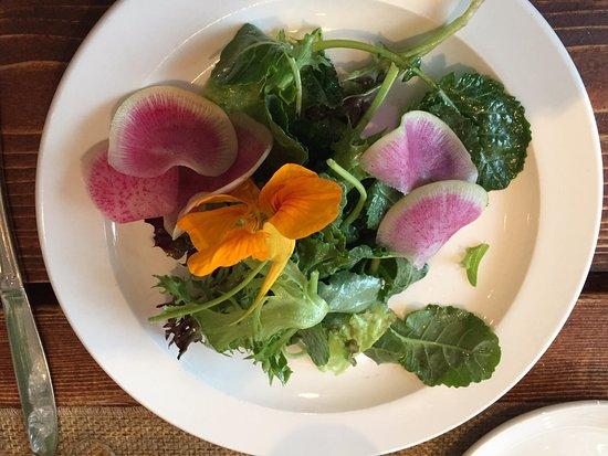 New Harbor, ME: Salad