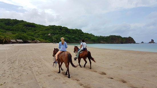 Bilde fra Morgan's Rock Hacienda and Ecolodge