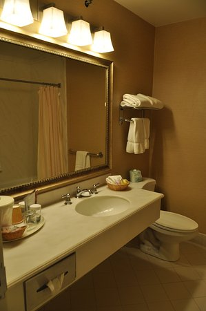Cow Hollow Inn and Suites: Part of our bathroom view - room 222 at Cow Hollow Inn
