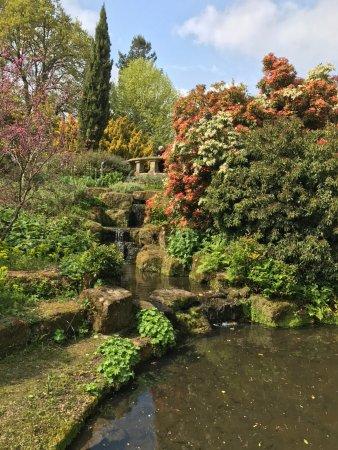 Haywards Heath, UK: Lovely moving water