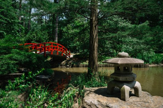 Durham, NC: Japanese-style arched bridge in the Culberson Asiatic Arboretum at Sarah P. Duke Gardens