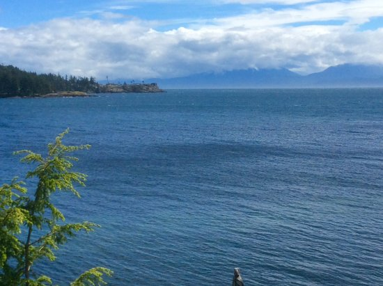 Sooke Harbour House Resort Hotel: The view from our room.