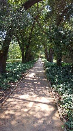 Aiken, Νότια Καρολίνα: Hopelands Gardens