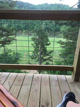 Tree House Cabins at River of Life Farm: View from the deck