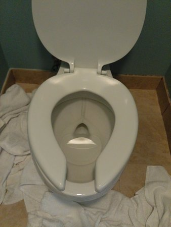 Howard Johnson Inn and Suites Vancouver by Vancouver Mall: Gross, stinky toilet