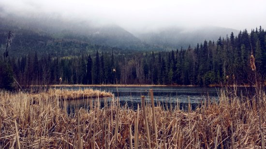 New Hazelton, Kanada: Seeley Lake trail