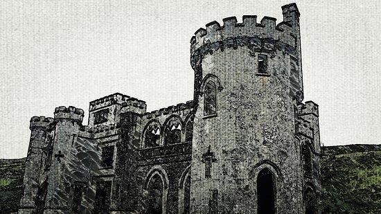 Clifden Castle: IMG_20170605_213826_932_large.jpg