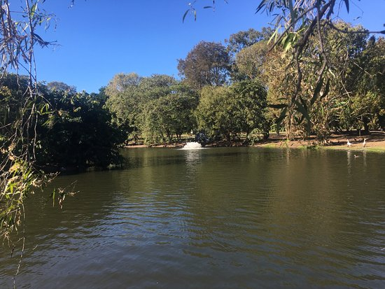 Bundaberg Botanic Gardens: photo8.jpg
