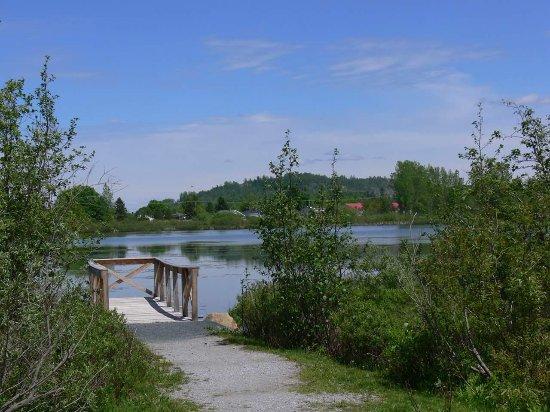 Parc de l'Étang Burbank