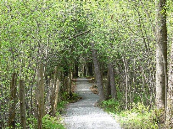 Danville, كندا: FB_IMG_1497054779520_large.jpg