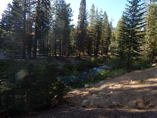 Stony Creek Campground: View of creek from camp site looking toward General's Hwy.