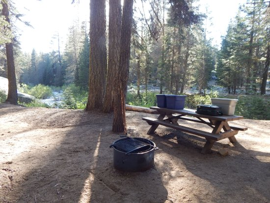 Camp site #12 picnic table & firepit near Stoney Creek