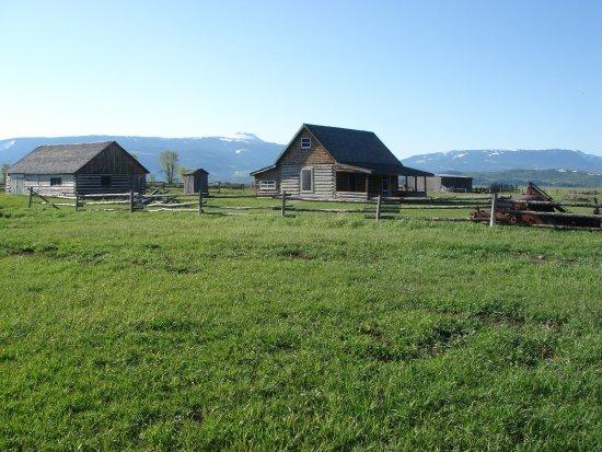 Buffalo Roam Tours - Day Tours: Homestead
