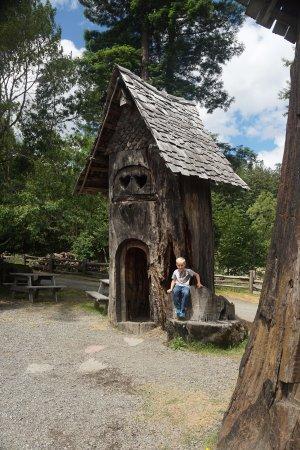 Myers Flat, Kaliforniya: Tree House
