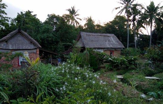 Bali Adventure Park