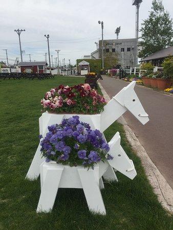 Hidaka-cho, Giappone: photo0.jpg