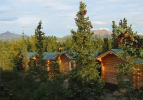 Park 39 s edge log cabins updated 2017 prices campground for Denali national park cabins