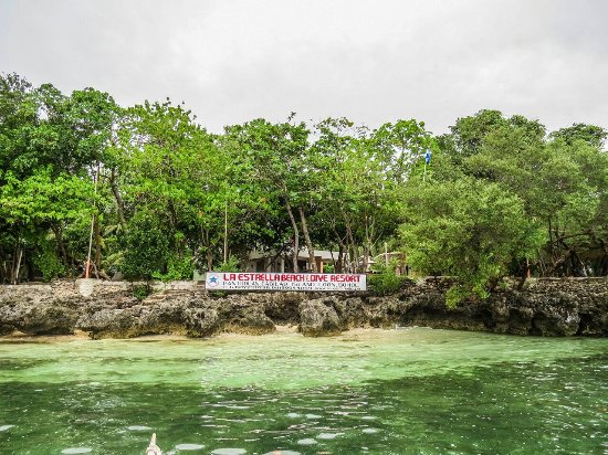 Cabilao Island 사진