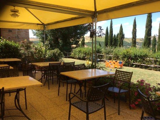 San Giovanni d'Asso, อิตาลี: Questo è il paesaggio dell'estate......pieno di fiori....e cene all'aperto....dove i bambini pos