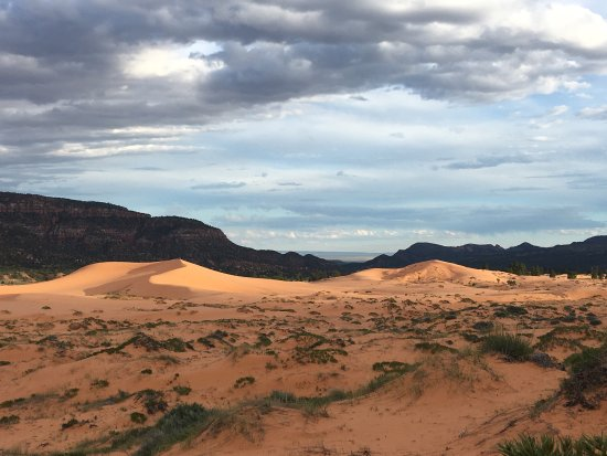 Coral Pink Sand Dunes State Park: photo1.jpg