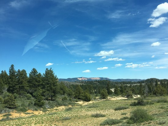 Dixie National Forest: photo2.jpg