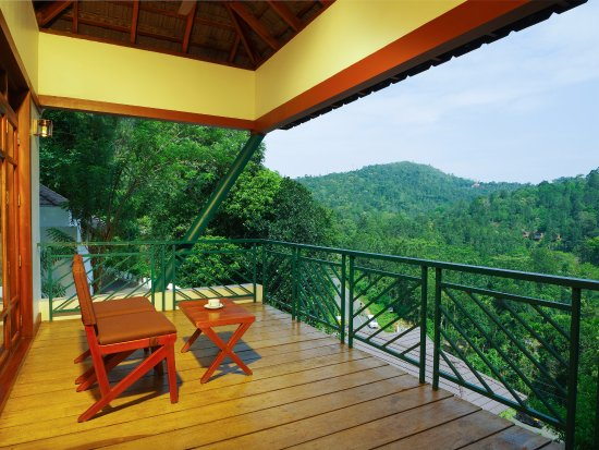 Forest Canopy & Forest Canopy $72 ($?9?3?) - UPDATED 2018 Prices u0026 Hotel Reviews ...