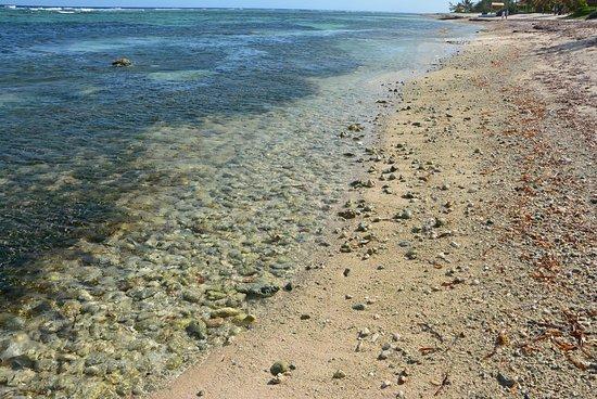 Bodden Town, Gran Caimán: Beach facing west