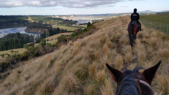 Springfield, New Zealand: 20170610_144946_large.jpg