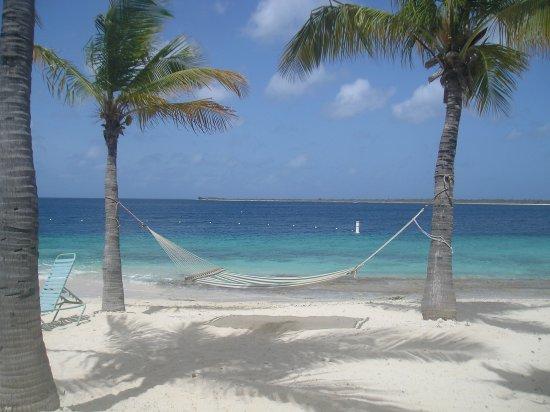 Harbour Village Beach Club Updated 2018 Prices Resort Reviews Bonaire Kralendijk Tripadvisor