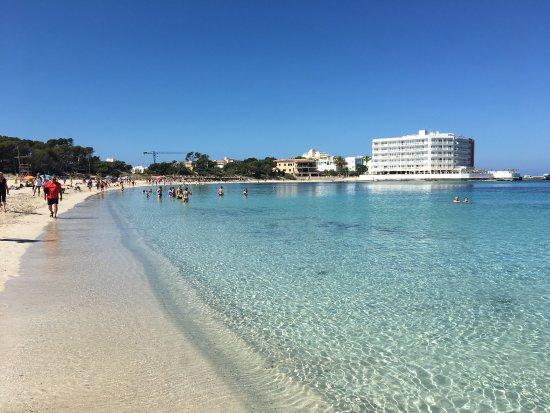 Www Hotel Mallorca Universal Marques