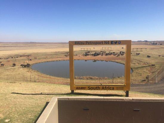 Middleburg, Güney Afrika: photo1.jpg