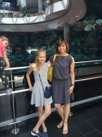 Near the big aquarium in Ocean Plaza
