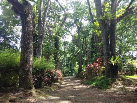 Davao City, Filipinas: walk way outside the Eagle Center
