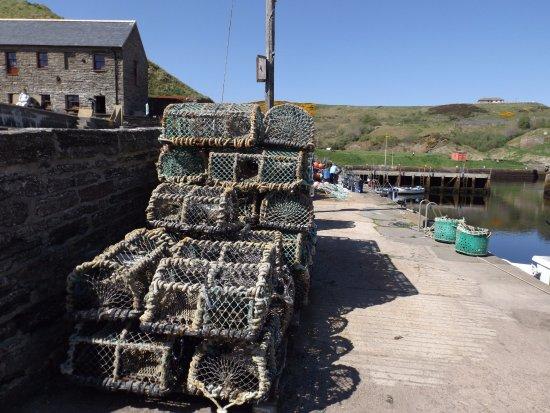 Lybster, UK: Lobster or crab pots