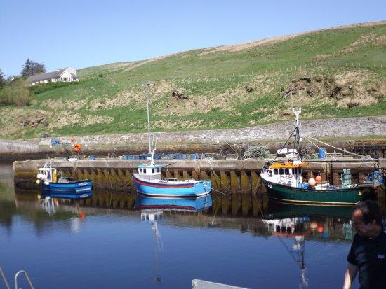 Lybster, UK: Harbour