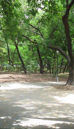 Campal Gardens