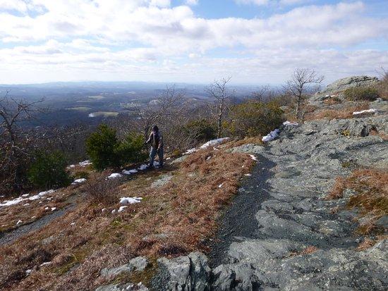 Floyd, VA: View from Buffalo Mountain summit