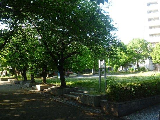 Hinode Minami Park