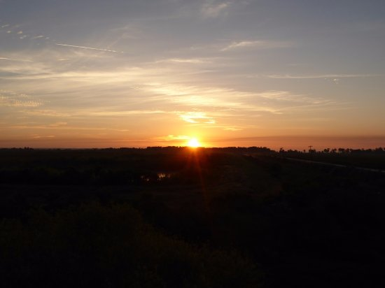Astatula, FL: Good morning sunshine!