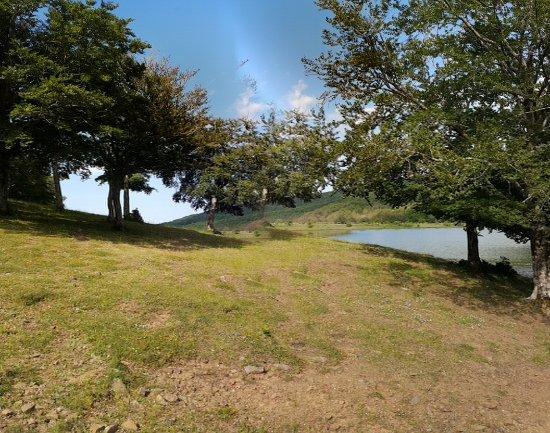 Cesaro, Италия: Lago Biviere