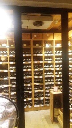Meinl am Graben: Räumlichkeiten welche für jeden Wein richtig temperiert sind