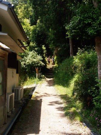 Mt Shosha hiking: photo0.jpg