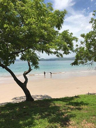 Playa Conchal: Beach at the resort.