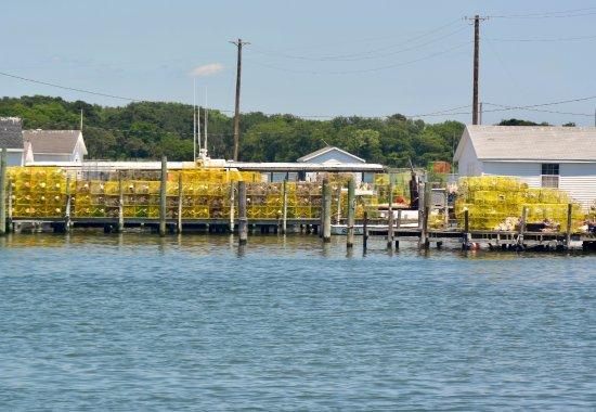 Reedville, VA: Waterman and Blue Crabs