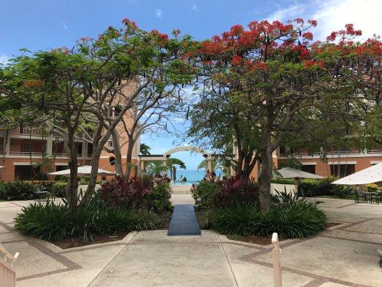 Rincon Beach Resort: Grounds overlooking the ocean