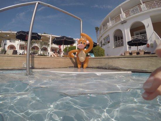 Bitzaro Palace Hotel: By the pool