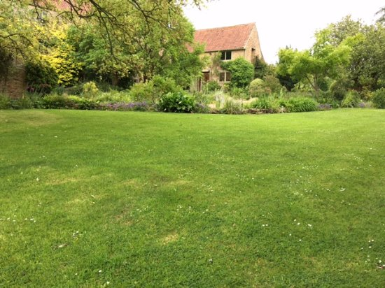 South Petherton, UK: A rare open vista - need over 100 pix to do justice to the plantings